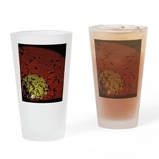 Australian Sun Drinking Glass