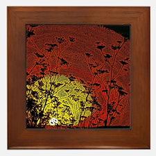 Australian Sun Framed Tile