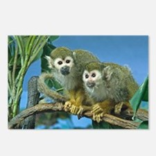 Monkeys on a Limb Postcards (Package of 8)