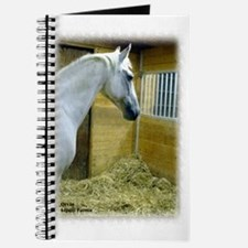 Unique Enhance Journal