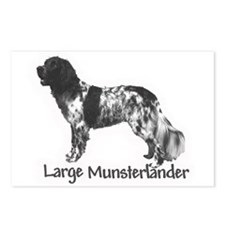 Munsterlander Postcards (Package of 8)