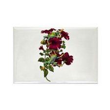 RED PETUNIA FROGS Rectangle Magnet (10 pack)