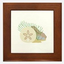 SAND DOLLAR ON OCEAN FLOOR Framed Tile