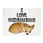 chihuahua.jpg 5'x7'Area Rug