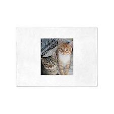 Tabby Kitty Cats 5'x7'Area Rug