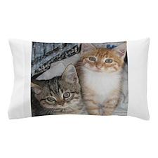 Tabby Kitty Cats Pillow Case
