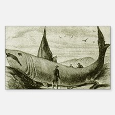 1868 Legged Shark Rectangle Decal