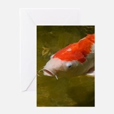 Koi Fish Greeting Cards