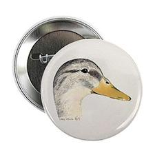 Duck Mallard Hen Button