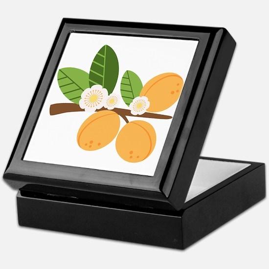 Apricot Blossom Fruit Tree Branch Keepsake Box