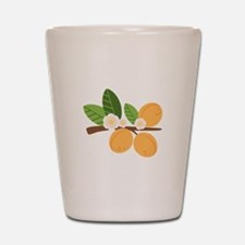 Apricot Blossom Fruit Tree Branch Shot Glass