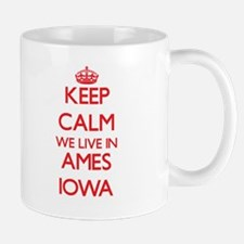 Keep calm we live in Ames Iowa Mugs