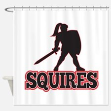 Knight Silhouette Squires Sword Shield Cartoon Sho