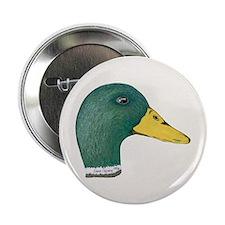 Drake Mallard Duck Button