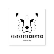 "Humans For Cheetahs Square Sticker 3"" X 3&quo"