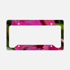 Orchid Frill License Plate Holder
