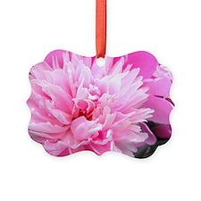 Pink Peony Bloom Ornament