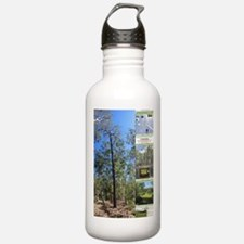 Large tall trees #odcctv Water Bottle
