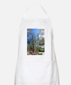 Large tall trees #odcctv Apron
