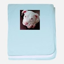 Pit Bull baby blanket