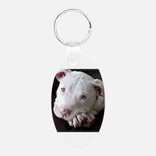 Pit Bull Keychains