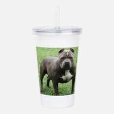 Pit Bull Acrylic Double-wall Tumbler