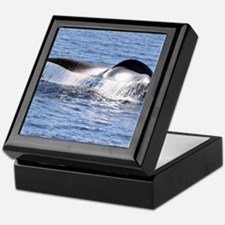 Blue Whale Flukes Keepsake Box