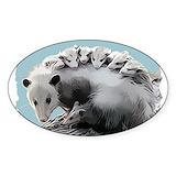 Opossum 10 Pack