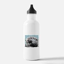 Possom Family on a Log Water Bottle