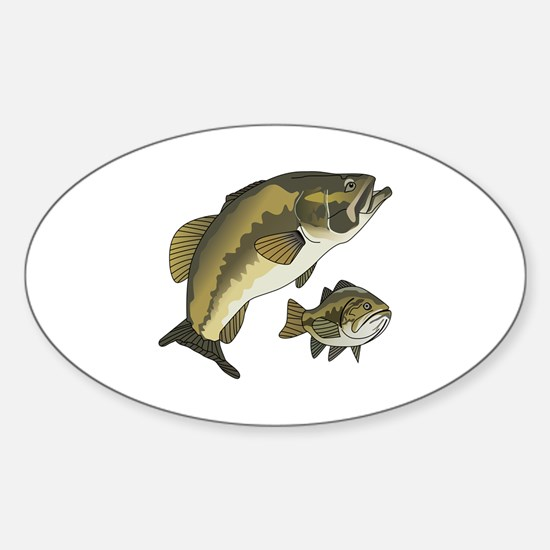 BASS FISHES Decal