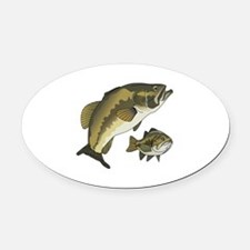 BASS FISHES Oval Car Magnet