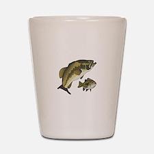 BASS FISHES Shot Glass