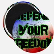 Defend Your Freedom Magnets