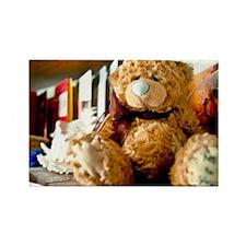 teddybear Day Magnets