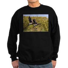 Brant Geese 1 Sweatshirt