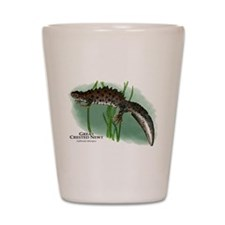 Great Crested Newt Shot Glass