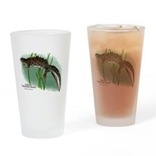 Great Crested Newt Drinking Glass
