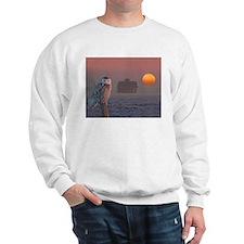 Unique Barn Sweatshirt