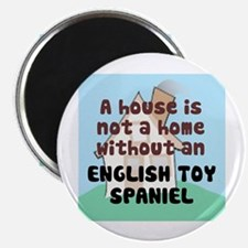 Toy Home Magnet