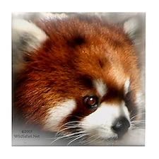 Red Panda Tile Coaster