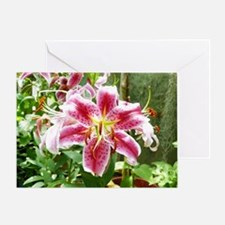 Purple Lily Flower Greeting Card