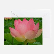 Sacred Lotus Flower Greeting Card