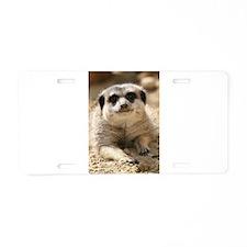 Meerkat084 Aluminum License Plate