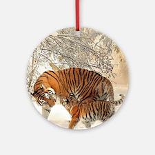 Tiger_2015_0126 Ornament (Round)