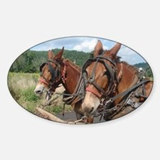 Two Mules for Sister Sue Decal
