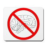 The No Brain Mousepad