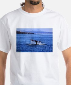 Gray Whale Point Loma T-Shirt