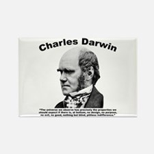 Darwin: Universe Rectangle Magnet