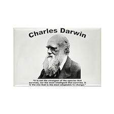 Darwin: Survival Rectangle Magnet