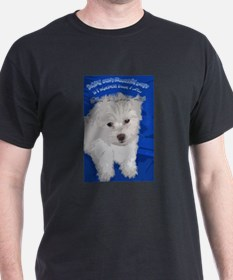 and a dog T-Shirt